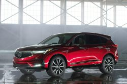 2019 Acura RDX.T 250x166 2019 Acura RDX Release Date